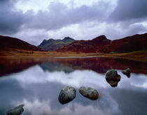 Blea Tarn and the Langdale Pikes, Cumbria von Craig Joiner