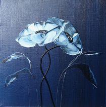blue velvet I by ilonka Walter