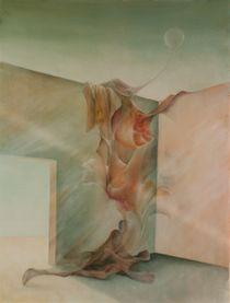 Geburt einer Illusion von Nicola Klemz