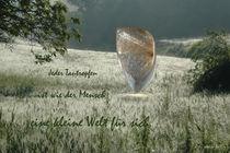 Das Tautropfenuniversum by Gerhard Bär