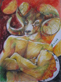 ARIES by Brigitte Hintner