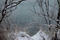 Winter Landscape von Wolfgang Amadeus van d Böhm
