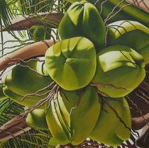 Kokosnüsse von Claudia Susan Ehrhard