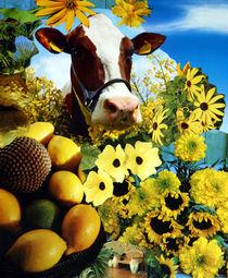 Flower Power Cow by Yvonne Pfeifer