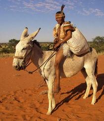 african postman von james smit