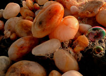 coastal pebbles von james smit