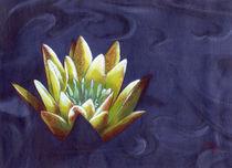 Wasserlilie in blau-gelb von Gabriel Bur