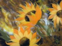 Wollbild Sonnenblumen 3 von Birgit Albert