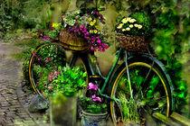 Das alte Fahrrad by Nikola Hahn