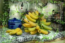 Bananen im Gitter by Nikola Hahn