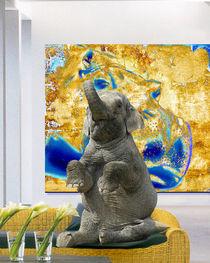 elefant allein daheim von wenzelbilderlust