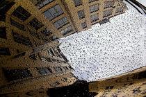 Spiegelung 4 by Lutz Wallroth