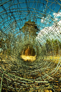 Maschendraht im Wald by Lutz Wallroth