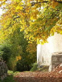 Herbsteinzug von christian grünberger TIAN GREEN