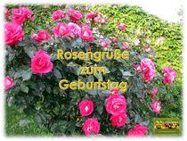 Rosengrüße zum Geburtstag von christian grünberger TIAN GREEN
