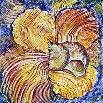 Muscheln von Olga Krämer-Banas