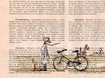 Radlerin am Nachmittag by Karin Tauer