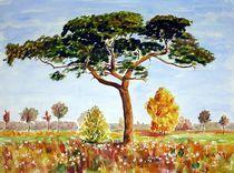 einsamer Baum von Karin Müller