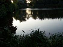 Naturlehrpfad im Ferienpark Blandorf Wichte by petra ristau