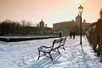 Winterbank by Ulrike Haberkorn