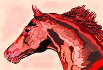 Freiheit in Rot von Sandra Vollmann.W.