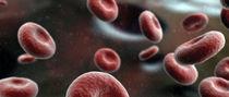 My blood by joaquin lozano
