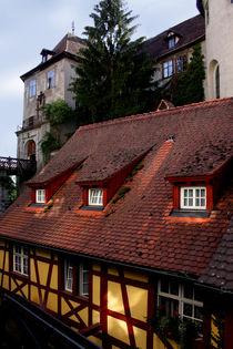 Meersburger Burg und Mühle by lizcollet