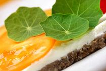 Vegetarische Brotzeit frisch aus dem Garten von lizcollet