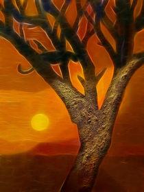Afrikas Sonne by Lutz Baar