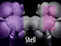 Shell in Art -pink beach by Angela Parszyk