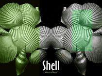 Shell in Art - Grüne Strandwiese von Angela Parszyk