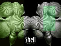 Shell in Art - Grüne Strandwiese by Angela Parszyk