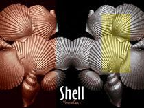Shell in Art - Strandleben by Angela Parszyk