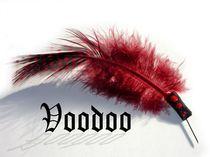 Voodoofeder by Angela Parszyk