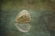 Silent wispers by Maria Ismanah  Schulze-Vorberg