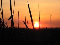 Sonnenuntergang 003 by Elke Schmidt