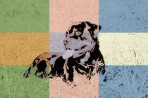 Popart Hund II von Gabriela Wejat-Zaretzke