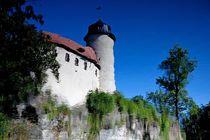 Wasserspiegelung der Burg Rabenstein von edler