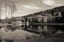 Still ruht der See… von Monika Häberlein