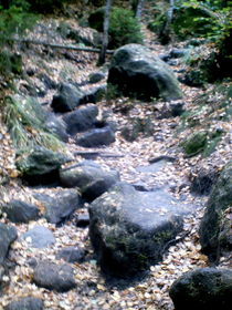 natürlicher Steinweg