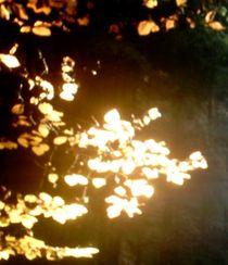 goldener Zweig