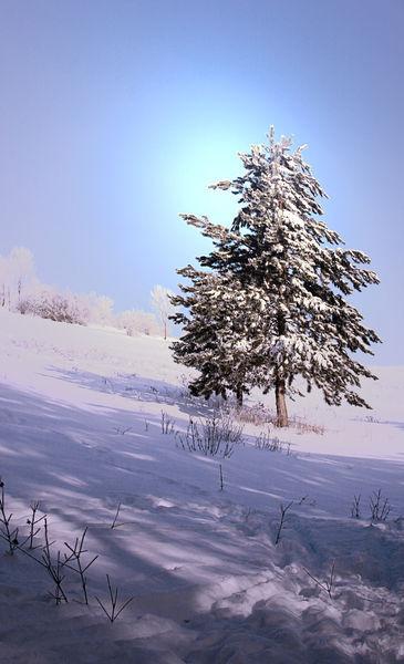 Wintertag-1