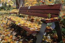 Bank mit Herbstblättern von rotschwarzdesign