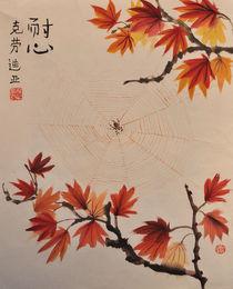 Spinnennetz im Ahorn by Claudia Janßen