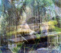 Ruhe by Petra Daikeler