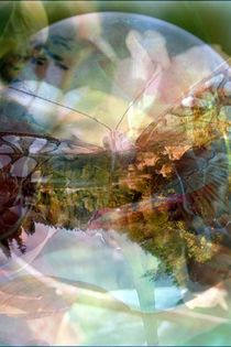 Fantasie 3 by Petra Daikeler