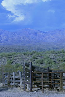 Arizona Horse Corral by sherry dunnigan