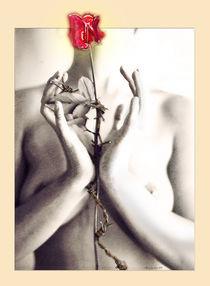 Bodyrose von artalacard
