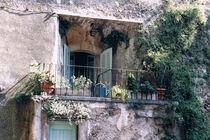 Provence by Walli Gutmann