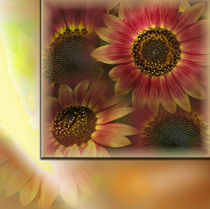 Sonnenblumen by Martina Rathgens